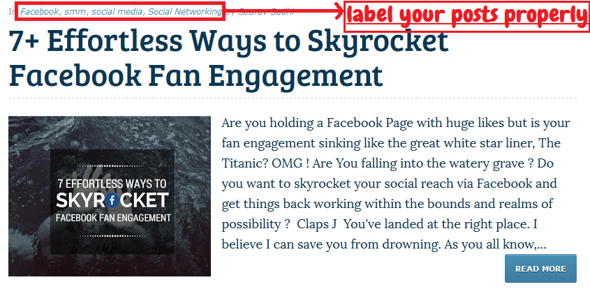 Categorize your blog posts properly